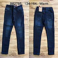 Джинсы утепленные для девочек оптом, Grace, 134-164 см,  № G82785, фото 1