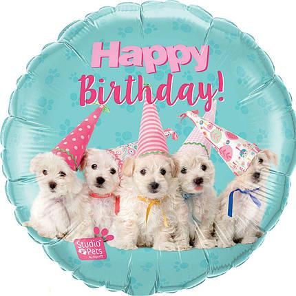 """Круг 18"""" QUALATEX-КВ Happy Birthday - собачки (УП), фото 2"""