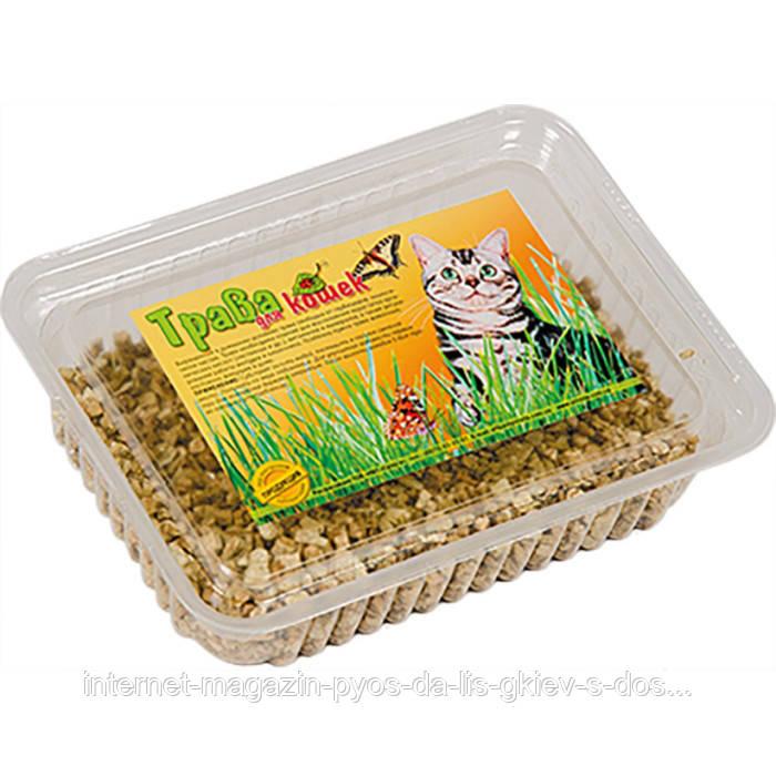Трава для кошек ТМ Природа 100г