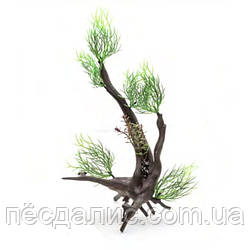 Aquael растение на корне пластик В3002 28х10х18см