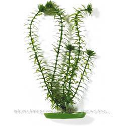 Hagen Marina Anacharis пластиковое растение 30см