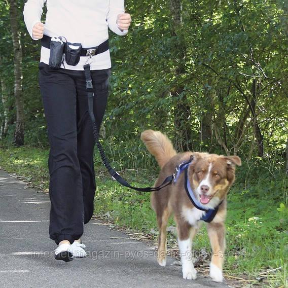 Тrixie Waist Belt with Leash ремень поясной с поводком для бега с собакой, 60-120 см/1-1.35 м