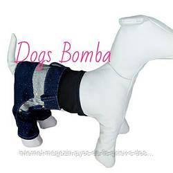 Джинсы синие для собак DogsBomba