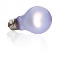 Hagen Exo Terra Daytime Sun Glo Heat Lamp A19 лампа неодимовая дневного света 100Вт