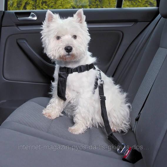 Тrixie Car Harness S автомобильная шлейка с ремнем безопасности 30-60см