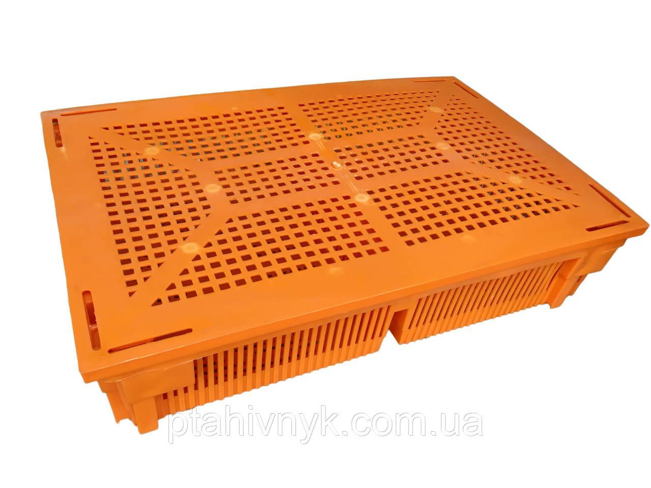 Крышка ящика для перевозки цыплят