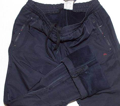Зимние спортивные штаны плащевка+флис Avic 3256 L, фото 3