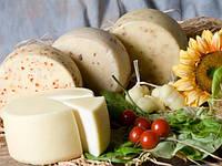 Закваска+фермент для сыра КАЧОТТА, фото 1