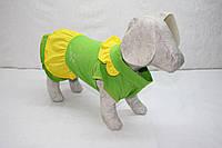 Одежда для собак, платье Цветочек