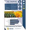 Купить насіння соняшника НС Таурус екстра (Юг Агролідер), фото 5