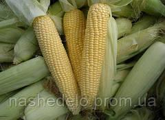 Агнес Ф1 1 кг. кукуруза Семо
