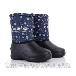 Сапоги женские зимние стильные COLUMBIA размеры 37-41 купить оптом со склада 7км Одесса