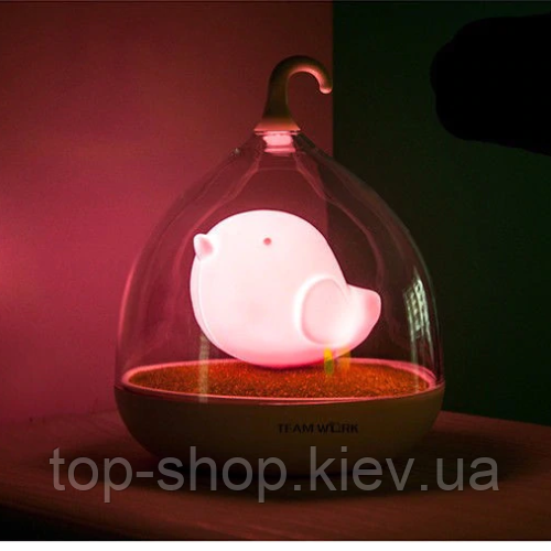 Ночник детский birdcage lamp LED Night Lamp Mini розовый