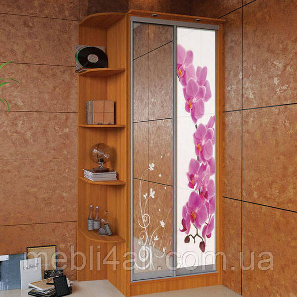 Шкаф-Купе 2х дверный 1000мм, фото 1