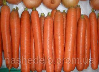 Семена моркови Йитка F1 50 гр. Semo