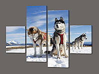 Картина из частей Сибирские хаски 120*93 см