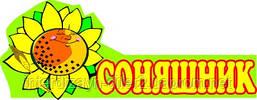 """Фигурная табличка на дверь """"Соняшник"""" для детского сада"""