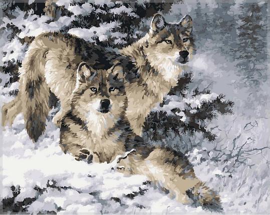Набор-раскраска по номерам Пара волков худ Феннинг Ларри , фото 2