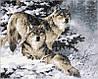 Набор-раскраска по номерам Пара волков худ Феннинг Ларри
