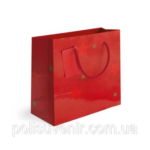 Подарочный пакет прямоугольный