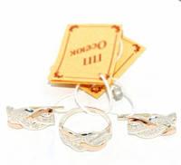 Серебряный набор с золотыми накладками 071