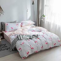 Хлопковое постельное белье в горошек с Фламинго (двуспальный-евро)
