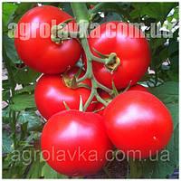 Семена томата индетерминантного Анталия F1 (100семян) Yuksel, Турция, фото 1