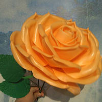 Роза абрикосовая 2 Ростовые цветы из изолона, фото 1