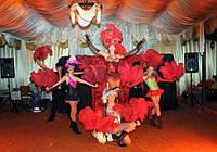 Организация праздников свадеб, шоу программы для свадьбы