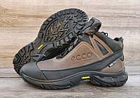 Мужские коричневые зимние ботинки Ecco Biom. Натуральная кожа и мех.