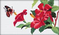 RTO Набор для вышивания Бабочка и клематис