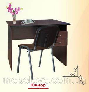 Стол письменный Юниор  750х1000х600мм   Пехотин, фото 2