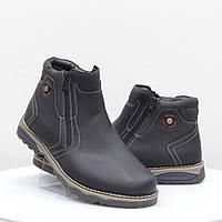 Мужские ботинки Stylen Gard (52109)