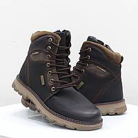 Мужские ботинки Stylen Gard (52114)