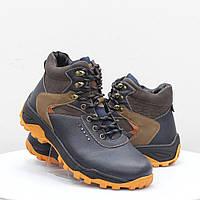 Мужские ботинки Stylen Gard (52113)