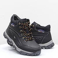 Мужские ботинки Stylen Gard (52106)