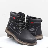 Мужские ботинки Stylen Gard (52111)