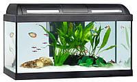 HAGEN MARINA Style 60 Аквариум для маленьких рыбок