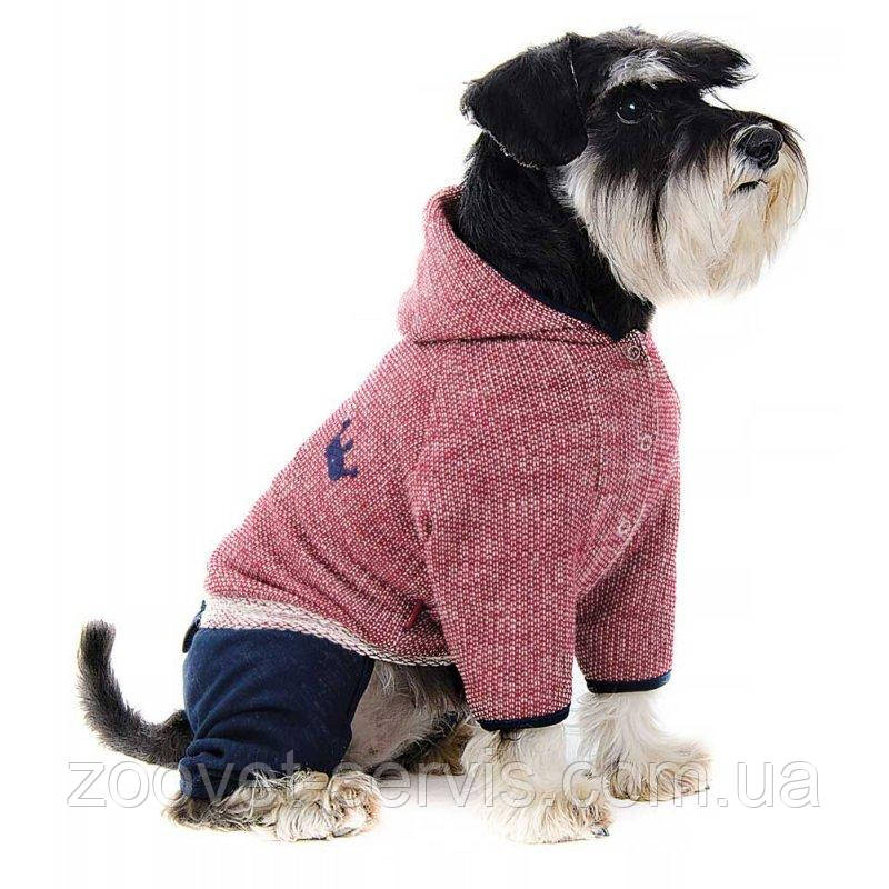 Костюм Pet Fashion Гранд S для собак