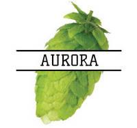 Хмель Aurora (SL) 2019 - 50г