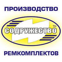 Набор патрубков радиатора СМД-18 трактор ДТ-75НБ (2 шт.)