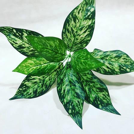 Искусственный куст диффенбахия.Декоративное, комнатное растение., фото 2