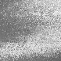 Скло візерункове рифленное Шиншила безбарвний 4мм