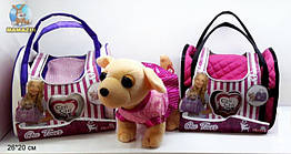 Собачка Chi chi love BT-T-0114 в сумке