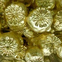 Головка мака золото