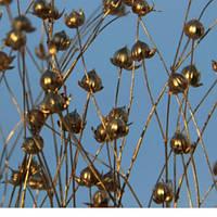 Сухоцвет льон золото
