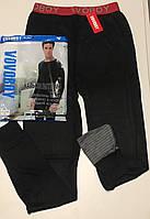 Мужские термо штаны ТМ Vovoboy оптом.