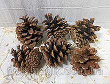 Шишки натуральні 4-4,5 см, набір 8шт