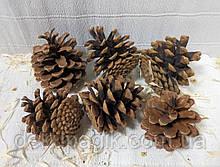 Шишки натуральні 3-3,5 см, набір 12шт