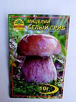 Мицелий Белого  гриба (Боровик) 10г